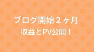 ブログ開設2カ月経過!PVと収益を確認!100記事達成後に変化が…!