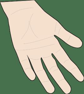 「手が大きい」の基準は?私が持たれたイメージ、手相学での性格など