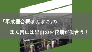 「平成狸合戦ぽんぽこ」のぽん吉には里山のお花畑が似合う!
