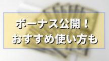 2019年ボーナスの使い道おすすめ3選【投資~贅沢】20代男のボーナス支給額もブログ公開!