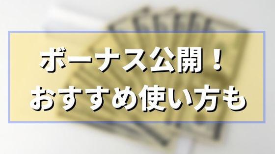 2020年ボーナスの使い道おすすめ3選【投資~贅沢】20代男のボーナス支給額もブログ公開!