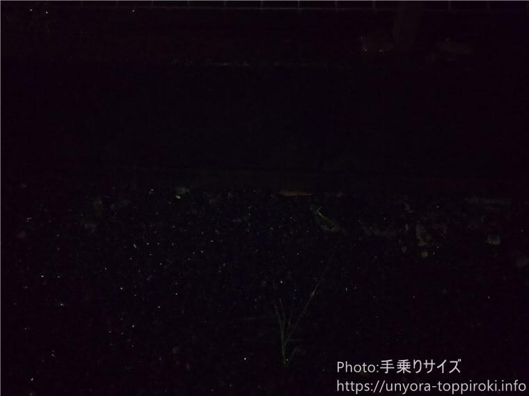 AQUOS Sense3ですごく暗い場所を撮影してみた写真